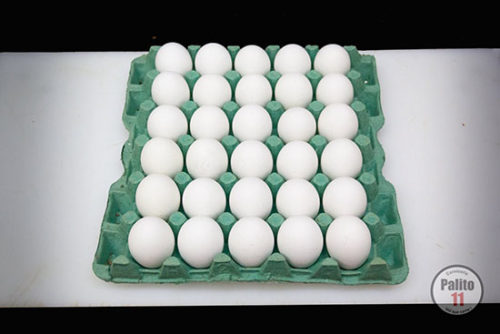 granja-huevos-000