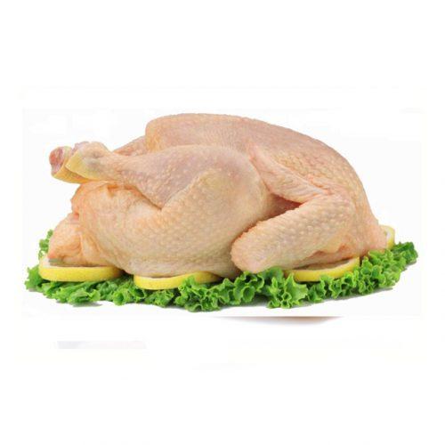 granja-pollo